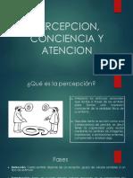 PERCEPCION, CONCIENCIA Y ATENCION