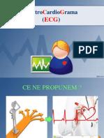 ecg LP 1 (2016-2017)