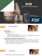 RUM (1).pdf