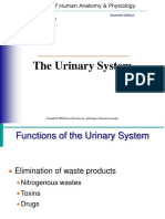 The Urinary System (17)