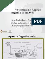 Anatomía y Fisiología Intestinal