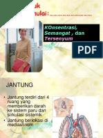 EKG Dasar 2