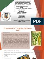 Expo generalidades y Clasificacion de Trigo ,Arroz y Maiz