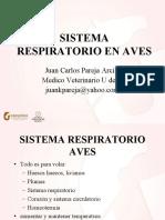 respiratorio caequinos
