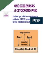 T7-cit_P450