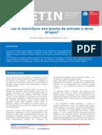 Boletin 11 Es la marihuana una puerta de entrada a otras drogas.pdf