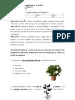 NATURALESN°6PLANTAS (1).doc