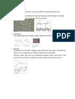 biomol polisakarida