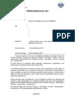 Informe Chupuro - Chongos Alto