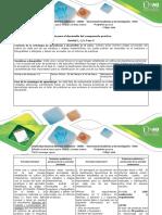 Guia Para El Desarrollo Del Componente Práctico (1)