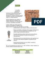 Chichimecas.pdf