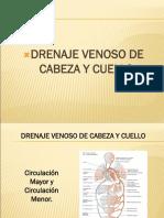drenajevenoso-130411174614-phpapp01