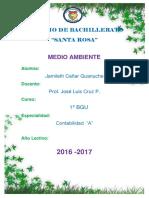 proyecto medio amiente 2.docx