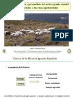Tema 2 San-miguel 2012 Historia e Importancia