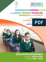 SECUNDARIA 3a Sesioìn CTE 2017-18.pdf