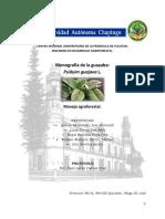 Monografia de Psidium guajava L..pdf