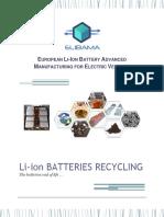 v-d-batteries-recycling1.pdf