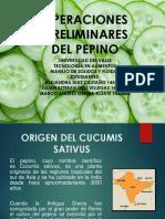 (Diapositivas Del Pepino. 1)