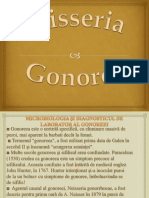 Neisseria gonorea