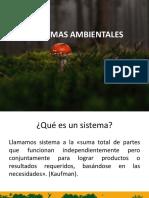 U.1 Sistemas Ambientales II