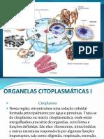 organelas citoplasmáticas I.pptx