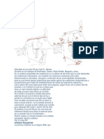 42780428-Analisis-de-Steiner.docx