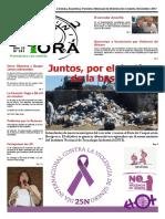 Ñu Pora Noviembre 2017