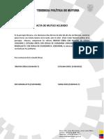 Acta de Mutuo Acuerdo 2