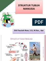 STRUKTUR TUBUH MANUSIA 1 (SEL).pptx