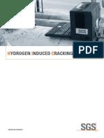 SGS-IND-HIC-A4-EN-10.pdf