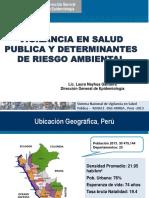 Dfbab 10. Vigilancia Epidemiol Gica Peru