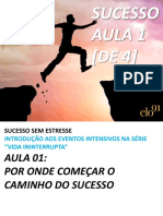Elo91 Aula 01 Sucesso Sem Estresse - Prosperidade Produtividade Plenitude - APOSTILA