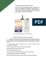 Procesamiento de Datos Petrofísicos