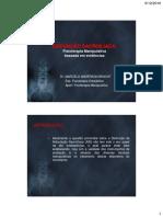 201012061436360.Apres_marcelo.pdf