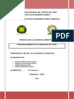Industria Del Pape-CORREGIDO