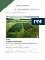 b5882_ANÁLISIS DE UN AFICHE PUBLICITARIO.docx