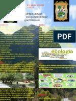 Cartel Ecología Del Estado de COAHUILA (1)