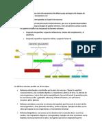 Bioquímica de Procesos de Defensa Del Organismo