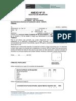 Anexos y Formatos SUNAFIL.doc