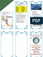 Tritico de Las Regiones Del Peru