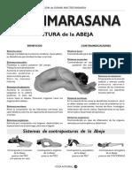 abeja.pdf