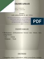 rognis EKSHUAMASI