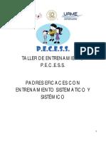 Manual Pecess Resumen