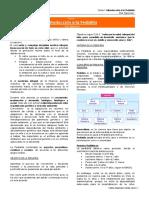 MANUAL PEDIATRIA.pdf