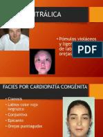 facies-130501132050-phpapp02