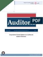Caso Practico Auditoria Sur Num 6