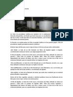 Informe de La Empresa Textil