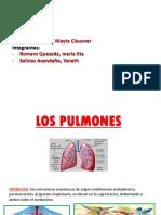 LOS PULMONES DIAPO.pptx