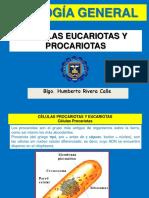 Biología 04-2015-2 Celula Procariota y Eucariota