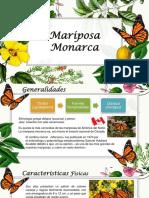 Mariposa Monarca Diane